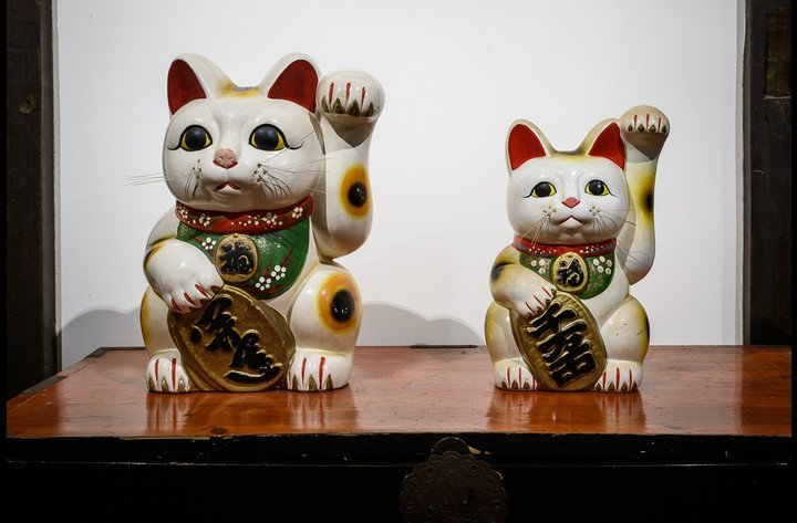 Maneki Neko, our little cats, welcome our guests as well as good fortune