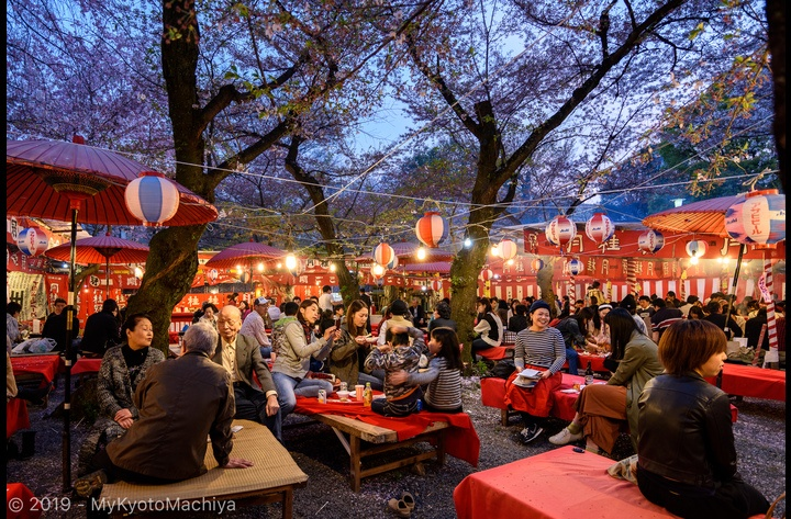 In April, everyone can share and enjoy a Hanami Party or cherry flower viewing with the Japanese. Fun and memorable memories guaranteed.